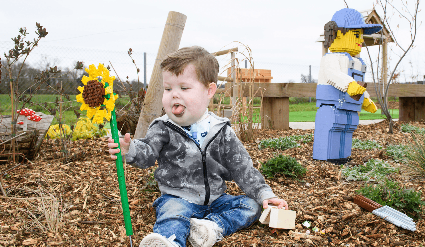 Young boy playing with lego sunflower.