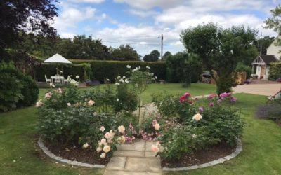 Blooming marvellous fundraiser