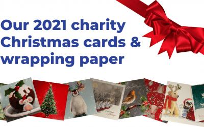 Shop our 2021 Christmas range